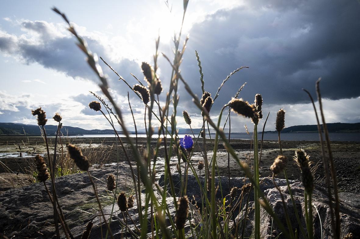 Inverness-scozia-highlands-viaggio-di-nozze-merkinch-natural-reserve-doppioscatto-fotografie